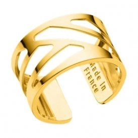 Les Georgettes Gold 12mm Ruben Ring